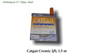 Catgut Plain