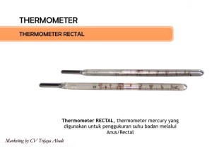 THERMOMETER Rectal
